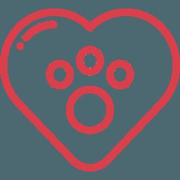 Продолжительность жизни Аляскинский маламут