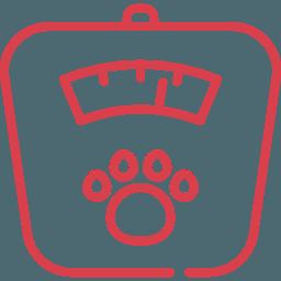 Средний вес Бородатый колли